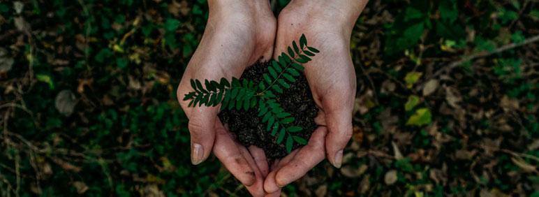 Consejos para una oficina eco-friendly | Blog Grupo Cador